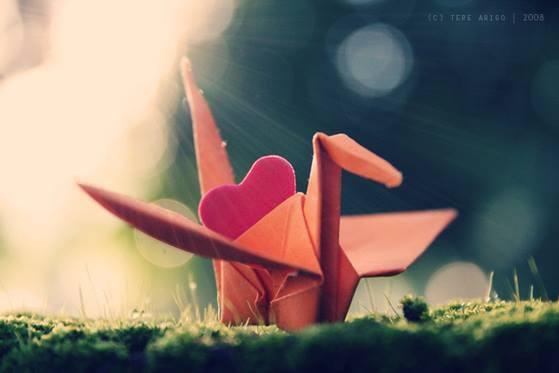 Thơ tình gửi em nói hộ lời nói trái tim yêu dành tặng nàng